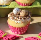 Vogelnestje (mini) cupcakes